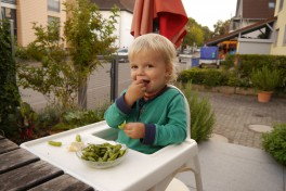 Little boy sitting on a table and eating Edamame.