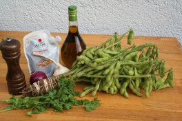 Ingredients for the recipe on a table. A bundle of Edamame, a bottle of olive oil, Miso, fresh coriader, a pepper mill